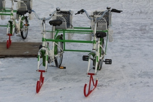 Eolgomi Bike